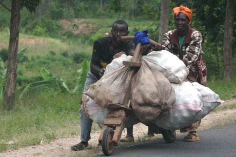 """""""Xe thời tiền sử"""" ở châu Phi"""