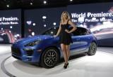 Porsche hoãn hợp tác với Sharapova
