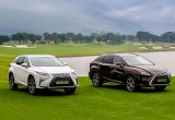Toyota Vietnam to recall RX350 and RX200t