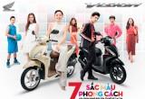Honda Việt Nam thêm lựa chọn màu mới cho mẫu xe VISION