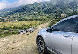 Honda CRV 2020 du ký: Không đi Y Tý, phí cả cuộc đời!